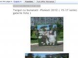 Targul cu bunatati -Ploiesti 2012 ( 15-17 iunie) ( galerie foto )