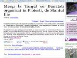 Mergi la Targul cu Bunatati organizat in Ploiesti, de Sfantul Ilie