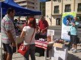Sinaia - 7-9 septembrie 2012 - poze eveniment