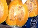 Buzau - 19 - 21 octombrie 2012 - poze eveniment